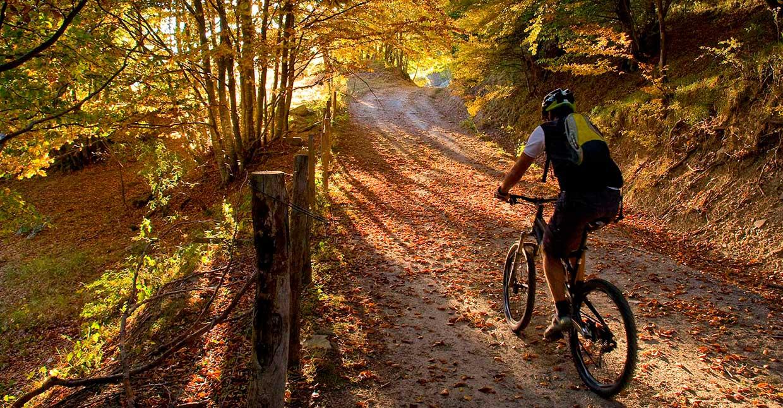 Découvrir la Franche-Comté à vélo