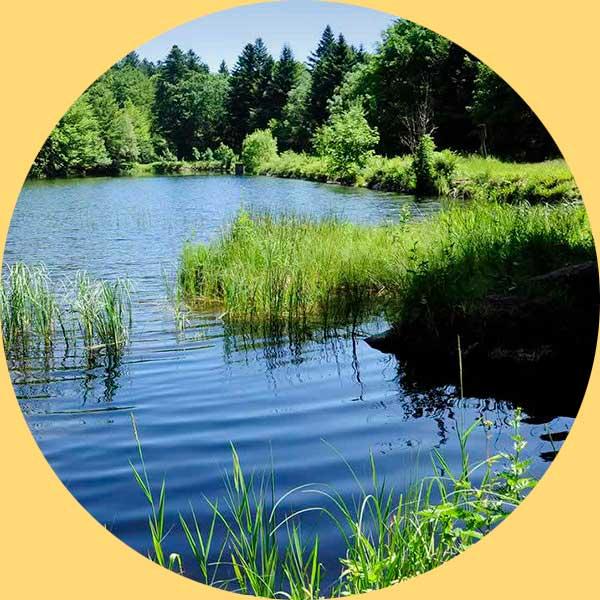 """Le site de """"So Nord Franche-Comté"""" développement économique"""